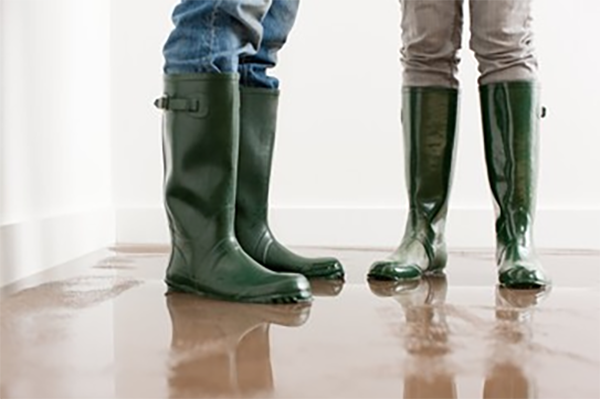 Water & Flood Damage Restoration Services